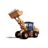 Wheel Loader, Concrete Equipment, Tower Crane, Truck Crane, Land Clearing and Compact Construction Machinery