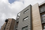 Solid Natural Wood Facade and Decking